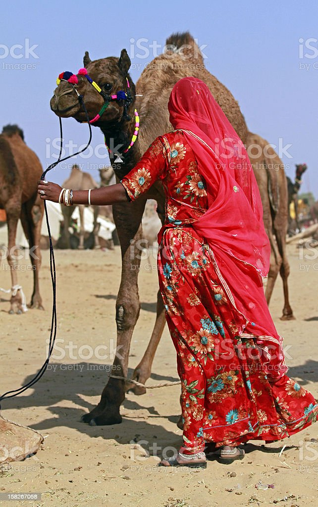 Indian women with Camel royalty-free stock photo