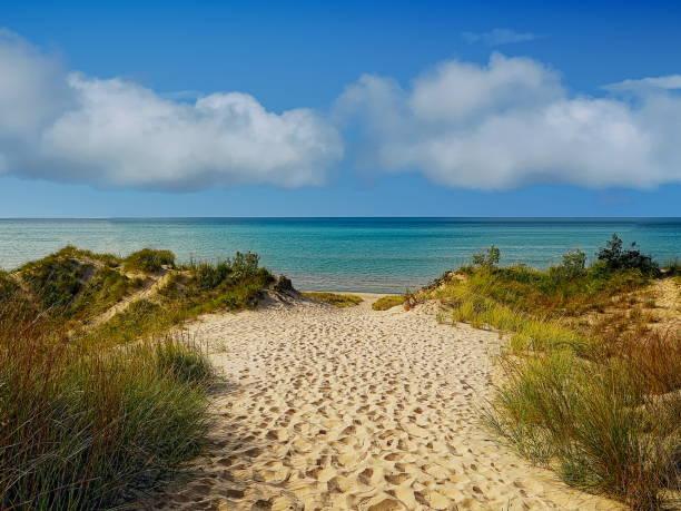 indiana dunes state park - sanddyn bildbanksfoton och bilder