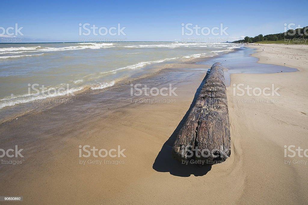 Indiana Lakeshore with Log royalty-free stock photo