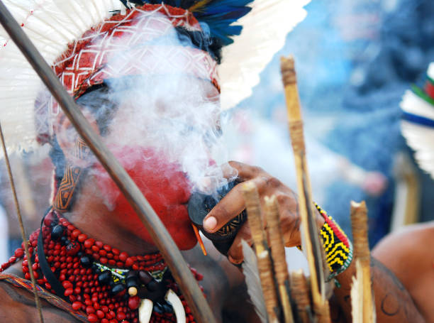 Indigenous face painted man with smoke around his head. stock photo