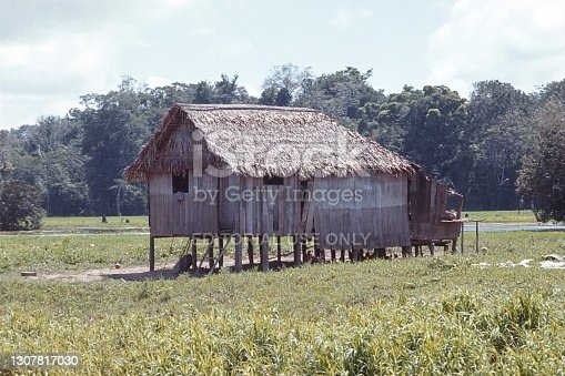 Amazonia, Brazil, 1975. Indigenous hut in the state of Amazonia.