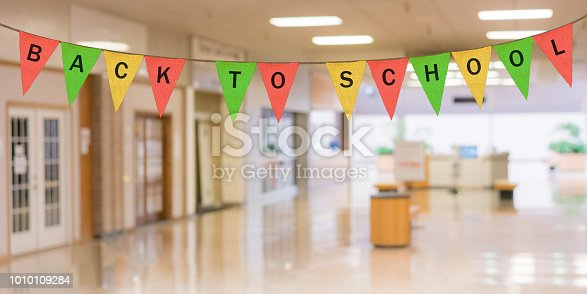 istock Individual cloth pennants or flags with Back to School 1010109284