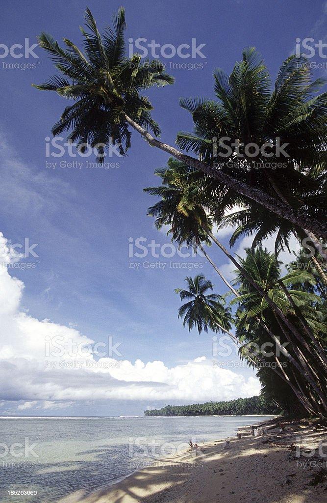 Indonesia, West Sumatra Province, Mentawai Islands, beach. stock photo