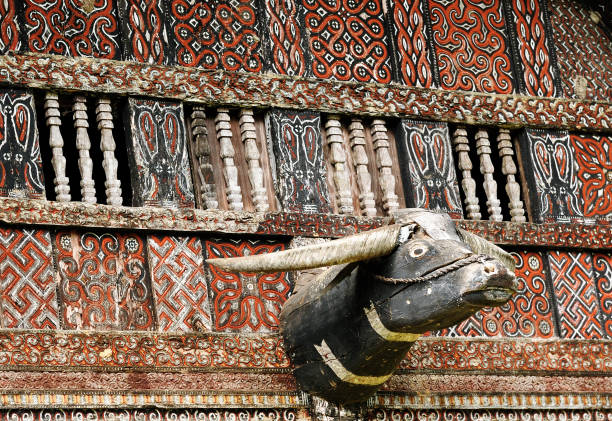 Indonesia, Borneo Traditional sweeping and elaborately painted houses with boat-shaped roofs in Tana Toraja. Tongkonan house on the Palawa village. Indonesia sulawesi stock pictures, royalty-free photos & images