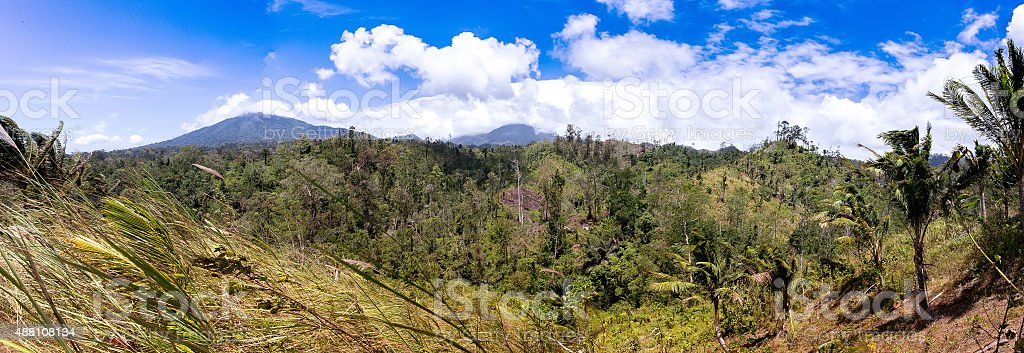 Indonesian landscape with volcano stock photo