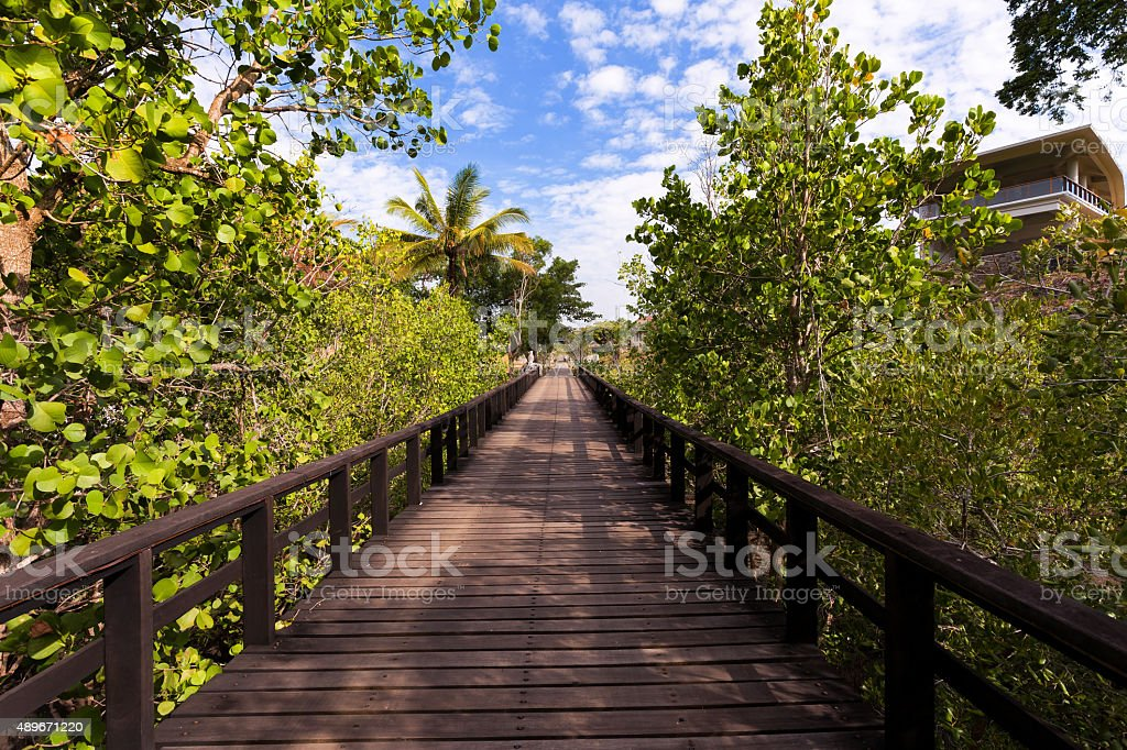 Indonesian landscape with walkway stock photo