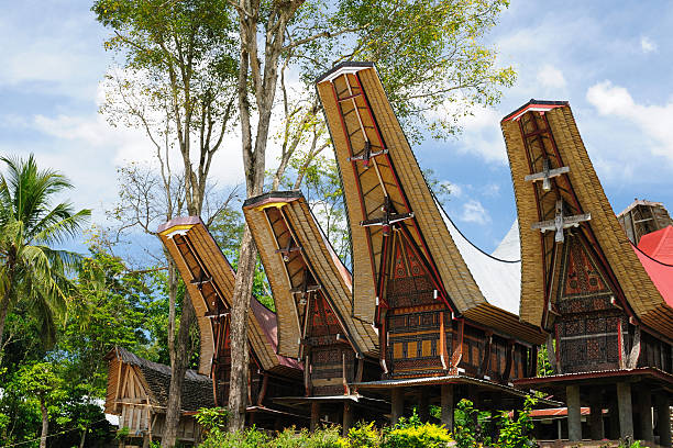 Indonesia, Sulawesi, Tana Toraja, Traditional village Traditional sweeping and elaborately painted houses with boat-shaped roofs in Tana Toraja. Tongkonan house. South Sulawesi, Indonesia sulawesi stock pictures, royalty-free photos & images