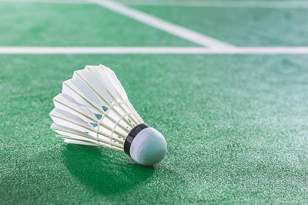 Indoor Badminton ball on green Badminton court stock photo