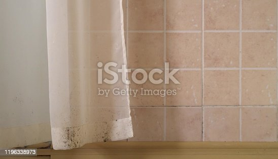 656168432 istock photo Indoor mold. Toxic black mold grow in damp places, on walls, floors, curtains, tile 1196338973