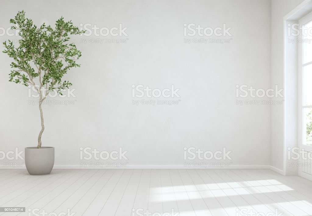 빈 흰 콘크리트 벽 배경, 현대 스칸디나비아 집의 밝은 거실에서 문의 나무와 나무 바닥에 실내 식물 - 로열티 프리 0명 스톡 사진