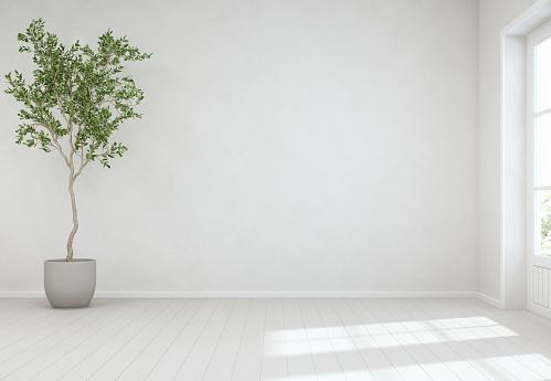 빈 흰 콘크리트 벽 배경 현대 스칸디나비아 집의 밝은 거실에서 문의 나무와 나무 바닥에 실내 식물 0명에 대한 스톡 사진 및 기타 이미지