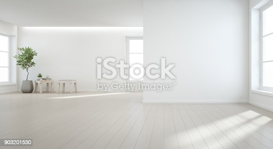 istock Indoor plant on wooden floor with white wall background in large room at modern new house for big family, Vintage window and door of empty hall or natural light studio 903201530