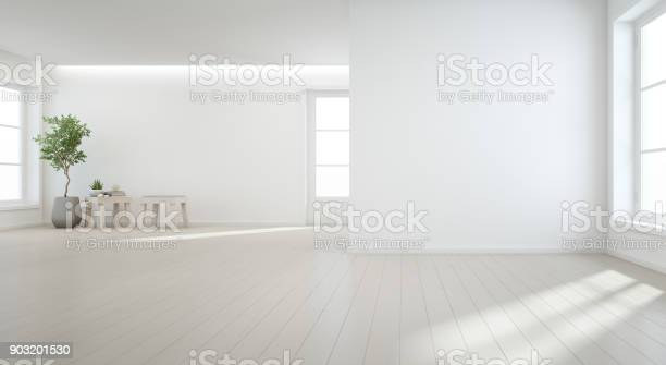 Indoor plant on wooden floor with white wall background in large room picture id903201530?b=1&k=6&m=903201530&s=612x612&h=lcxf71 i0ybt9vsuzmm0lde4wsovkpfnebic6hrcbdg=
