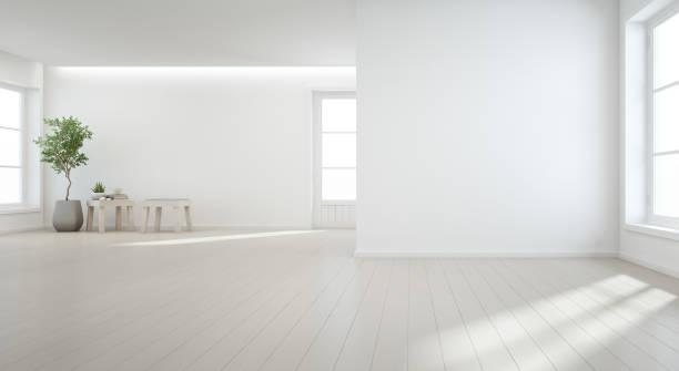 室內植物在木地板與白色牆壁背景大房間在現代新的房子為大家庭, 古典視窗和門空的大廳或自然光演播室 - 無人 個照片及圖片檔