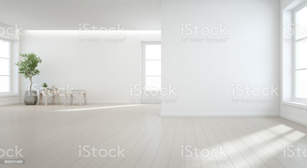 Indoor plant on wooden floor with white wall background in large room at modern new house for big family, Vintage window and door of empty hall or natural light studio stock photo