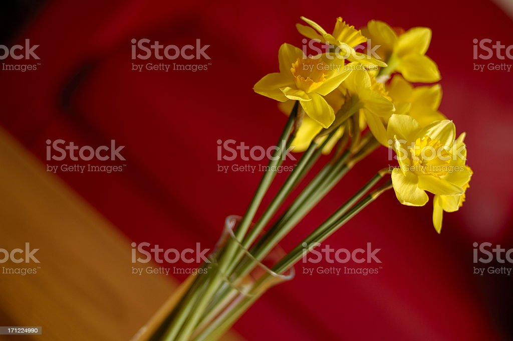 Indoor Radiance royalty-free stock photo