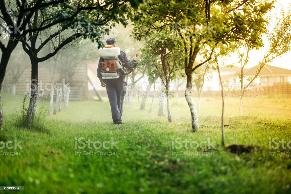 Industrial agricultural details - farmer spraying toxic substances in fruit orchard for treatment stock photo