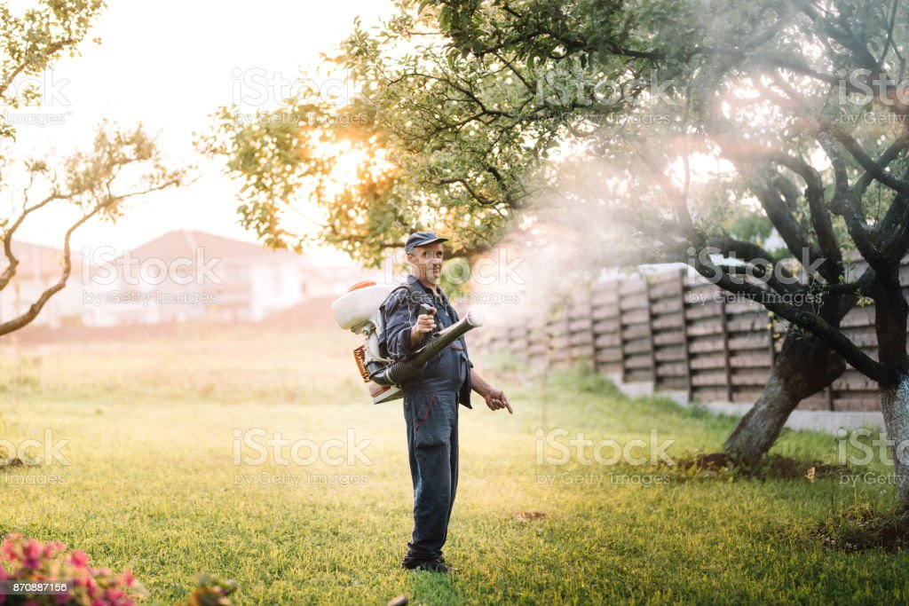 Industrial agricultural details - farmer working, spraying pesticides in fruit orchard stock photo