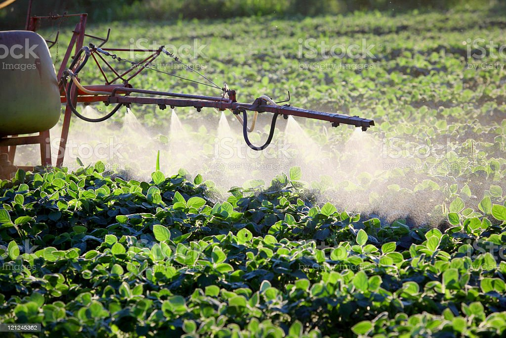 Industrial agricultural sprayer in the fields stock photo