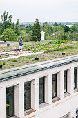 industrial building with an urban garden on the rooftop, people do gardening