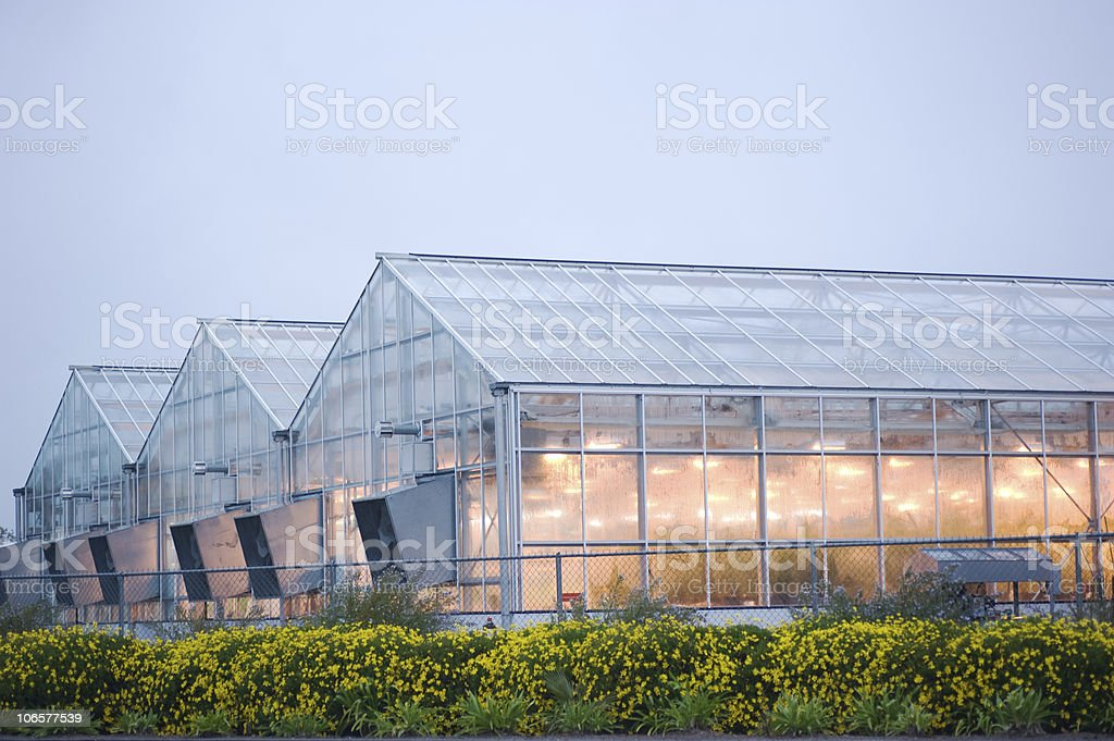 industrial greenhouse in davis stock photo