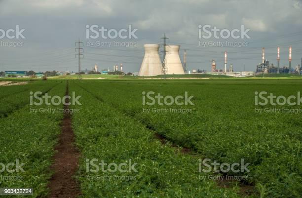 Chłodnice Rafineryjne Przemysłowe Na Polu Bawełny W Hajfie Izrael - zdjęcia stockowe i więcej obrazów Bawełna