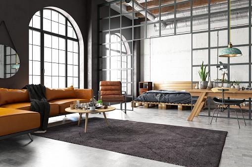 Industrial Style Loft Bedroom wiht Living Room
