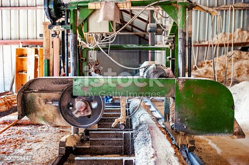 industrial wood production factory - band saw sawmill being used to cut a cedar log into dimension lumber