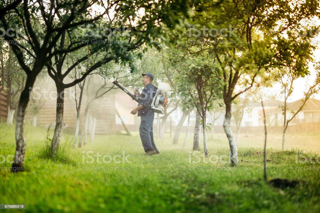 Industrial worker and farmer using spraying machine for pesticides and insecticide stock photo