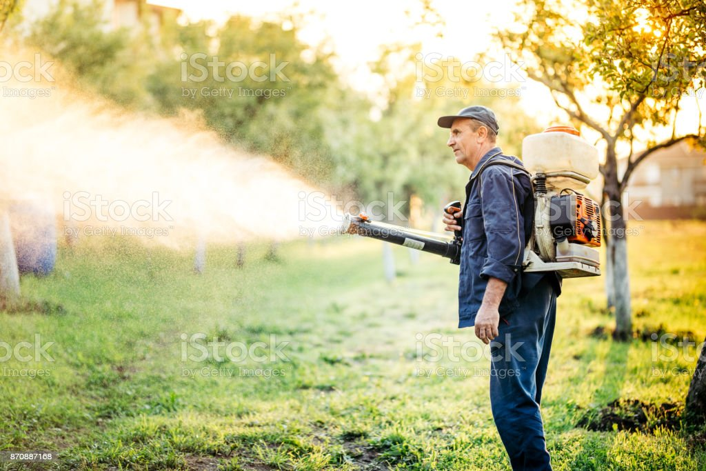 Industrial worker doing pest control using insecticide stock photo