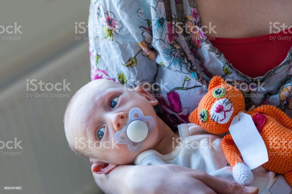 Infant boy child with a pacifier lies in his mothers arms with a orange knitted stuffed toy cat. stock photo