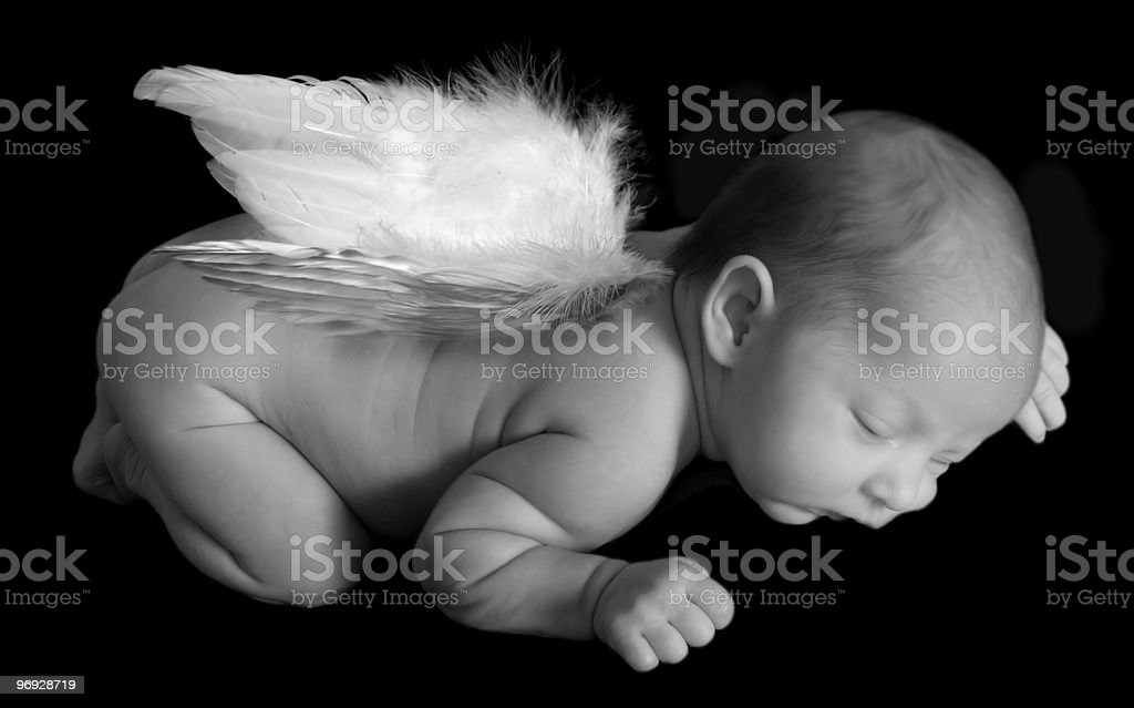 Infants Angel royalty-free stock photo