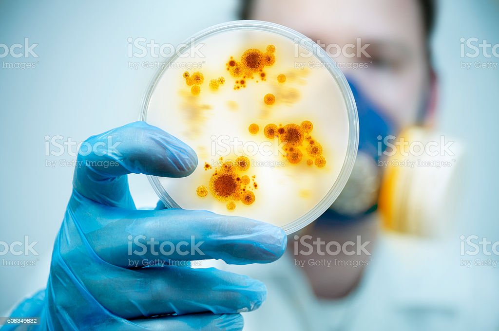 Infection And Disease Control royalty-free stock photo