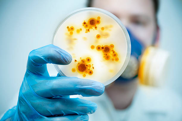 Infection And Disease Control stock photo