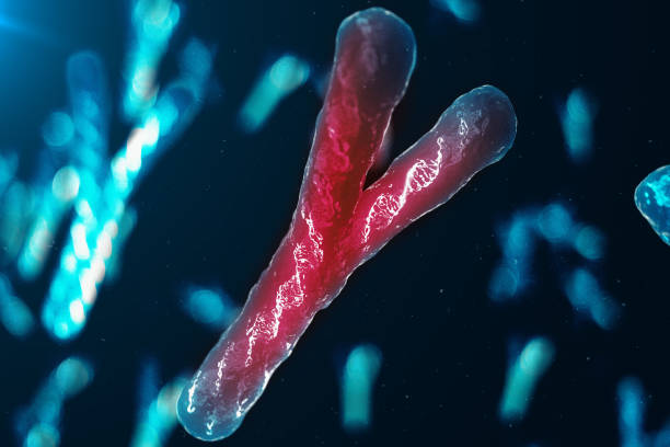 Infection of Y-Chromosomes DNA, virus or infection penetrates the body. Chromosomes with DNA carrying the genetic code. Changing the genetic code at the biological level. 3D illustration stock photo