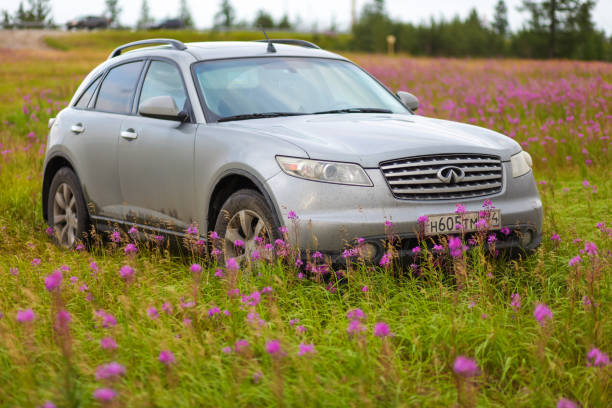 Infiniti FX35 Novyy Urengoy, Russia - August 3, 2019: Grey crossover Infiniti FX35 in the field of purple flowers. fx network stock pictures, royalty-free photos & images