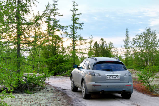 Infiniti FX35 Novyy Urengoy, Russia - June 26, 2017: Motor car Infiniti FX35 in the forest at the background of the sunset. fx network stock pictures, royalty-free photos & images