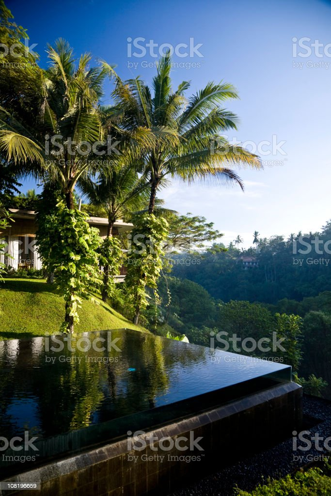 Infinity Swimming Pool Overlooking Bali Jungle Valley stock photo