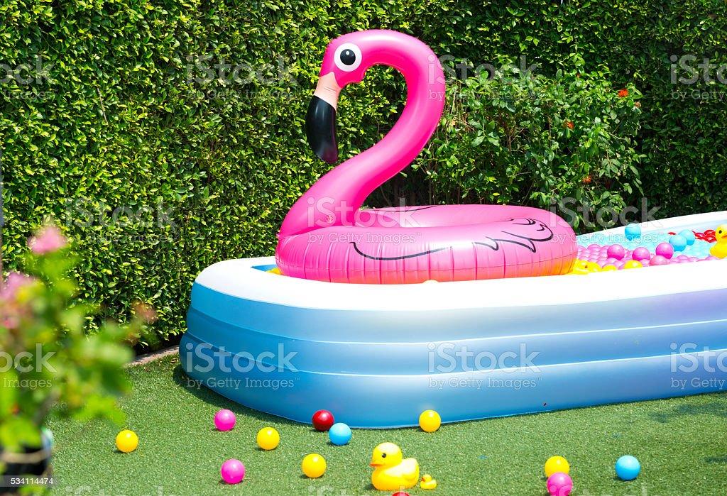 Fotograf a de colchonetas inflables piscina flamingo globo for Colchonetas piscina