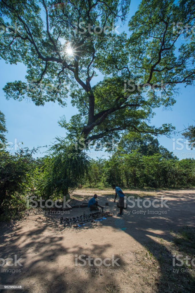 Informal Curios Business under a tree stock photo