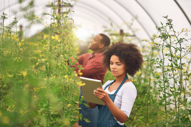 Information is a valuable resource on a farm stock photo