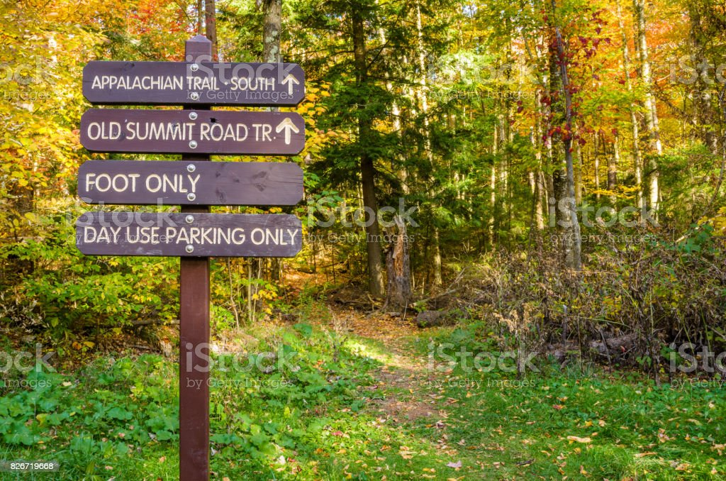 Information Wooden Signs on a Forest Path in Autumn stock photo