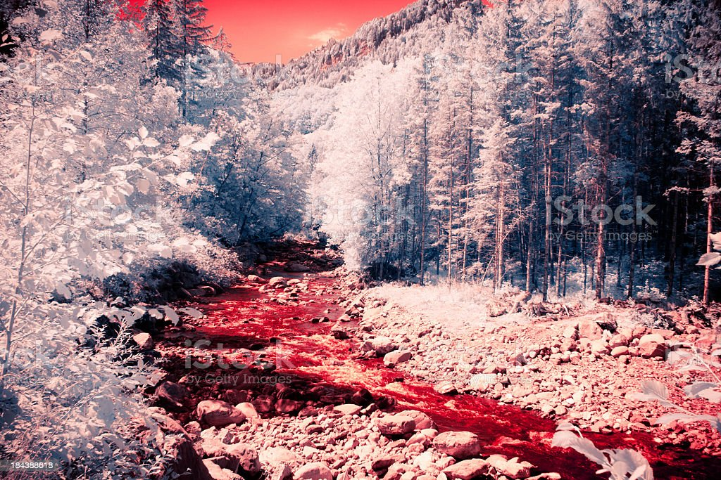 infrared blood river stock photo