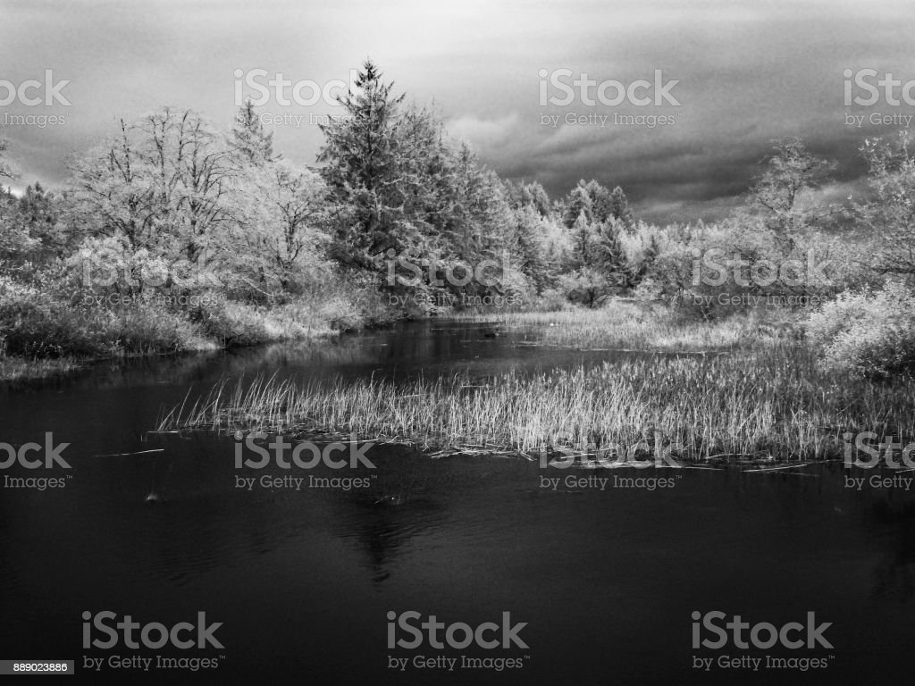 Infrared Image stock photo