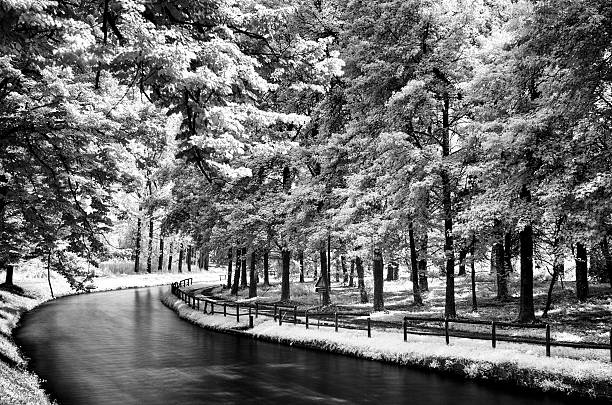 infrared long exposure footpath and river in the forest foto