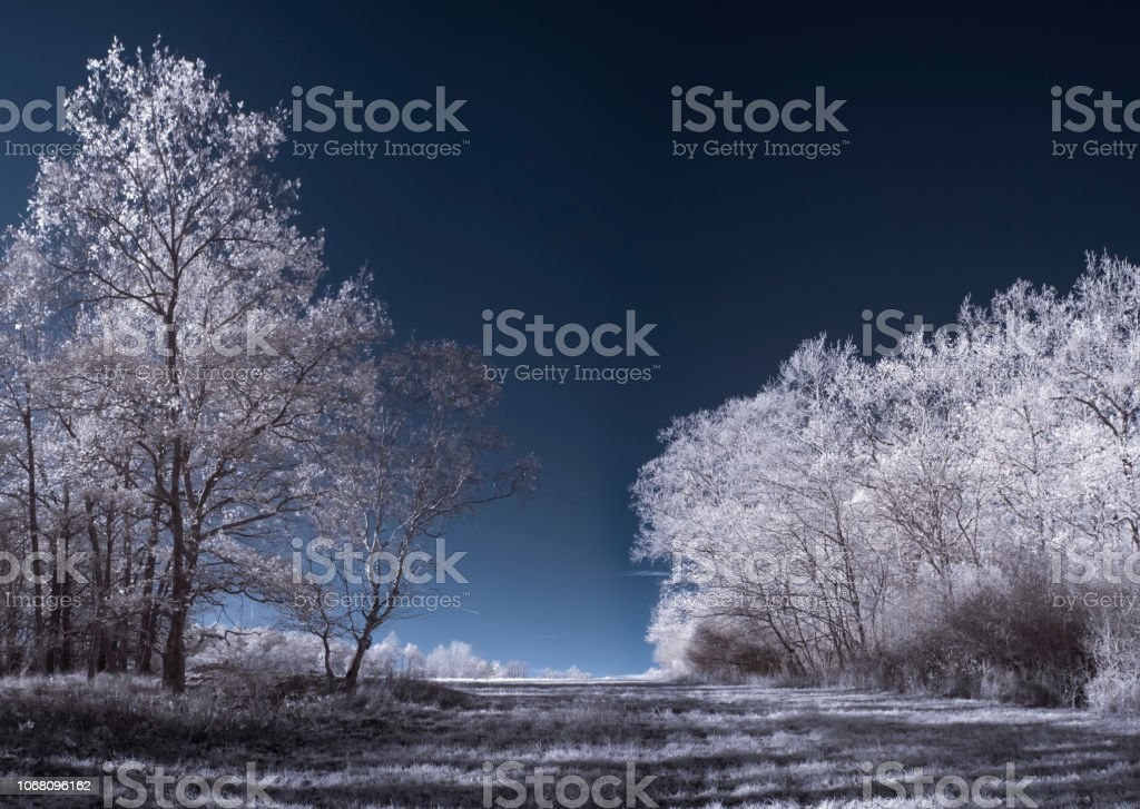 infrared photography - ir photo of landscape under sky with clouds stock photo