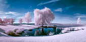 Infrared scene of a pond and trees on a beautiful sunny day