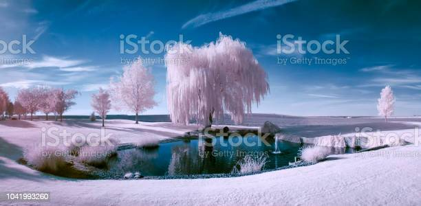 Infrared scene of a pond and trees on a beautiful sunny day picture id1041993260?b=1&k=6&m=1041993260&s=612x612&h=bz8hy2epbfrgbw8h8a ymwiwvjglafk m4 cexrzc m=
