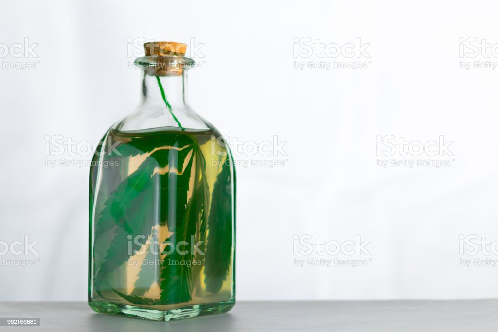 Infusion on the leaves of marijuana in a jar on a white background. stock photo