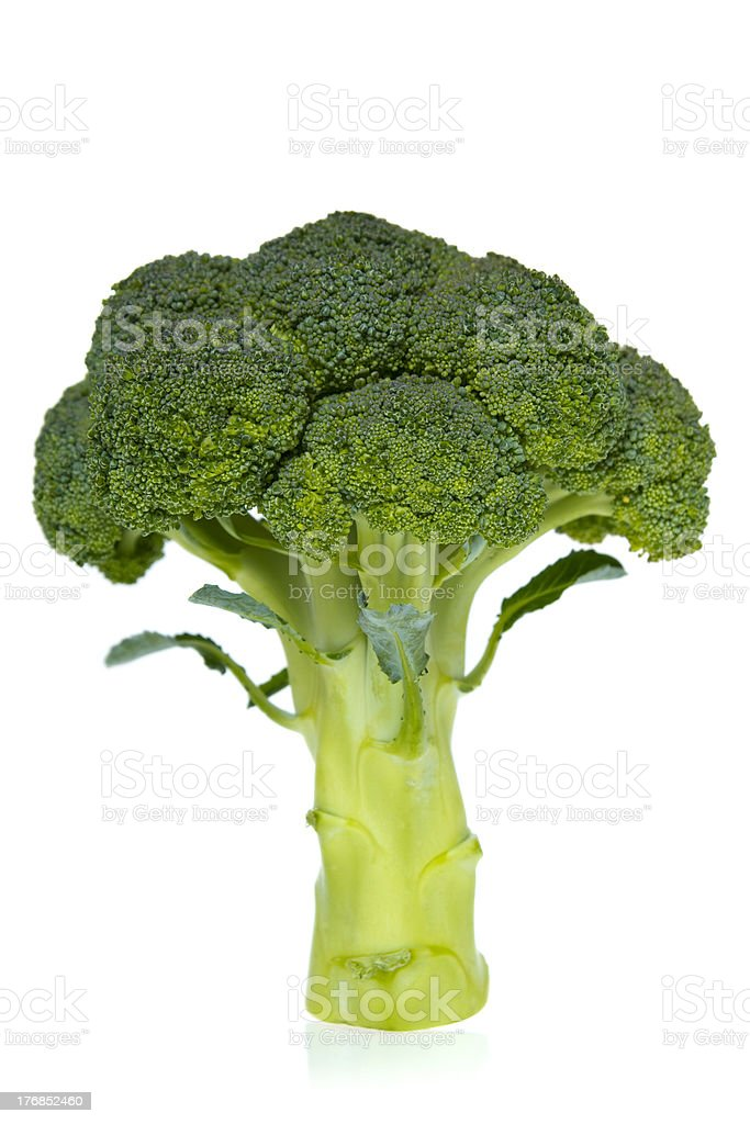 Ingredient: broccoli stock photo
